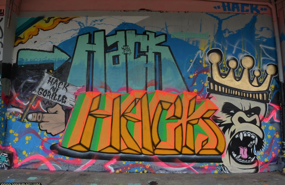 Photo de HACK, réalisée au Maquis-art Wall of fame - L'aérosol, Paris