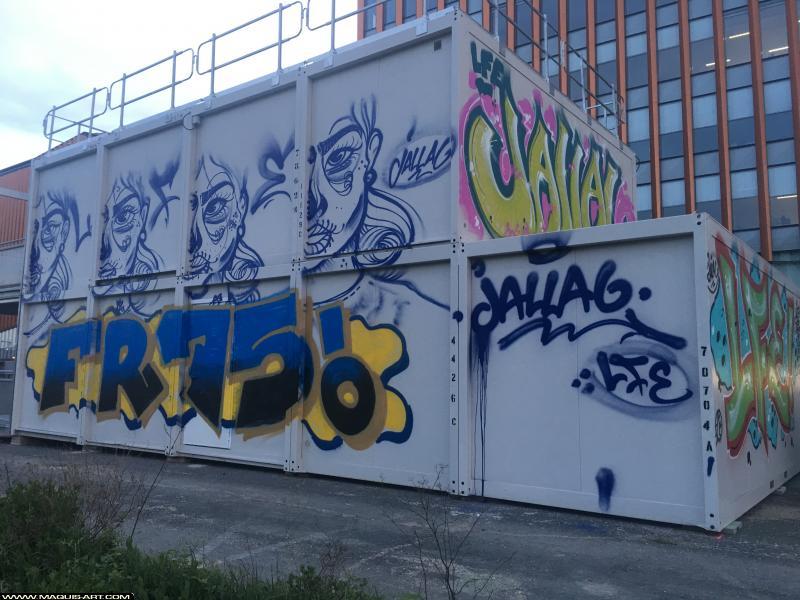 Photo de JALLAL, FR75, LFE, réalisée au Maquis-art Wall of fame - L'aérosol, Paris