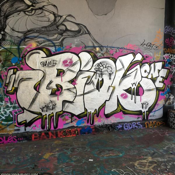 Photo de BIOKE, réalisée au Maquis-art Wall of fame - L'aérosol, Paris