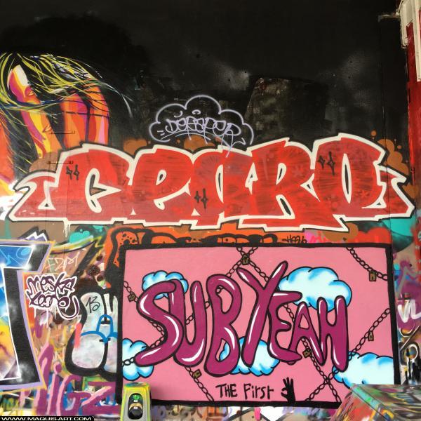 Photo de CEARO, réalisée au Maquis-art Wall of fame - L'aérosol, Paris