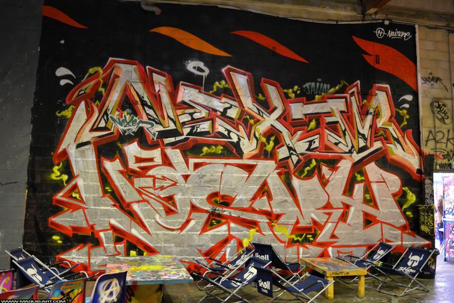 Photo de NEXER, NOSMY, réalisée au Maquis-art Wall of fame - L'aérosol, Paris