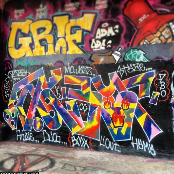 Photo de AKBAR, GRIF, réalisée au Maquis-art Wall of fame - L'aérosol, Paris