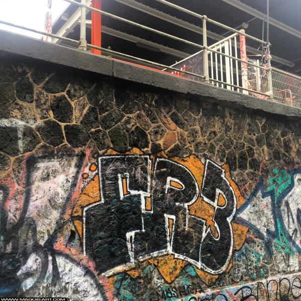 Photo de FR3, réalisée au Maquis-art Wall of fame - L'aérosol, Paris