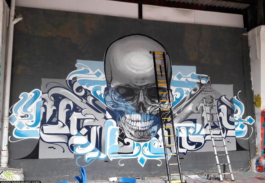 Photo de FLUIDE, NORIONE, réalisée au Maquis-art Wall of fame - L'aérosol, Paris