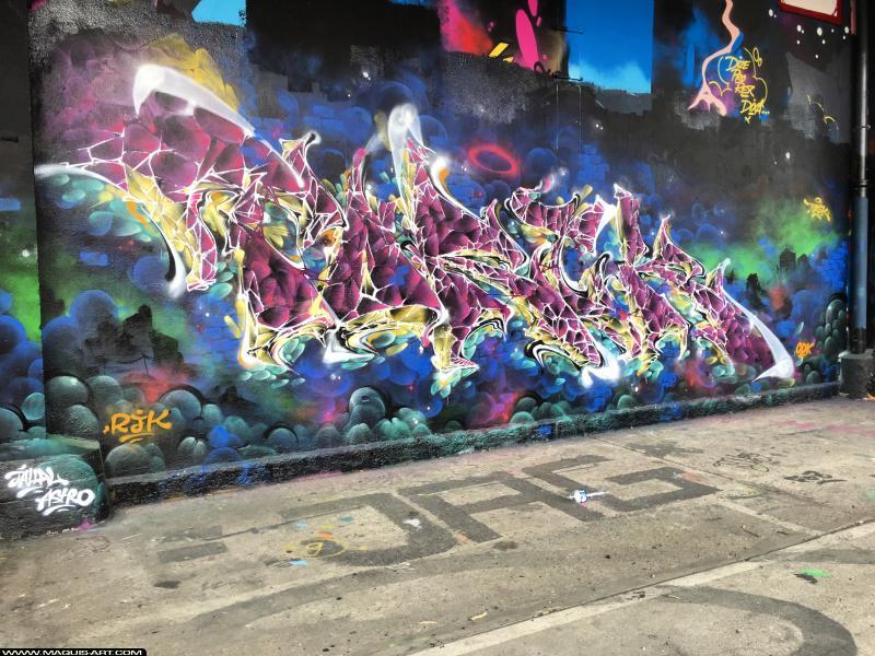 Photo de TOREK, réalisée au Maquis-art Wall of fame - L'aérosol, Paris
