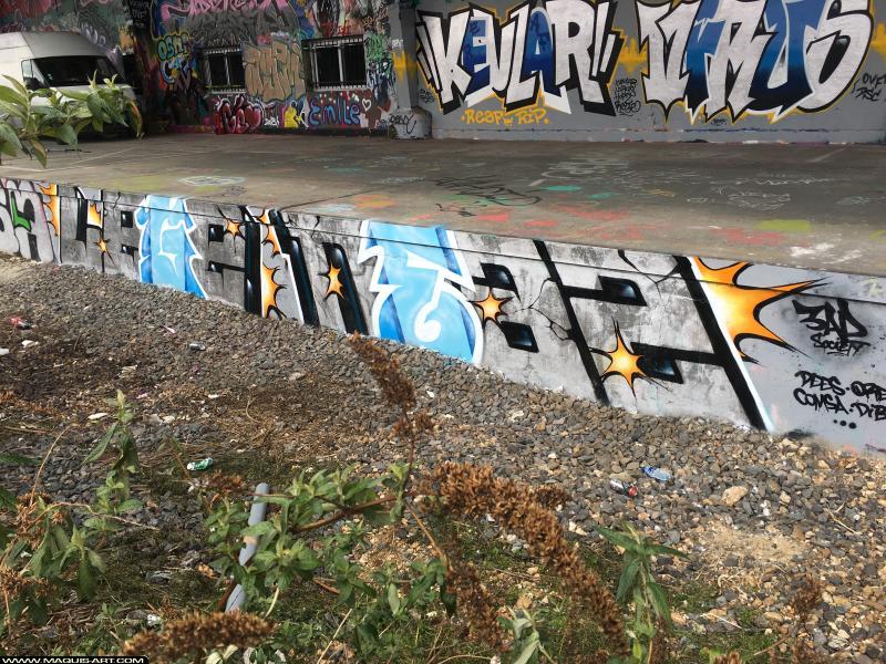Photo de NEAZ (OTS), réalisée au Maquis-art Wall of fame - L'aérosol, Paris