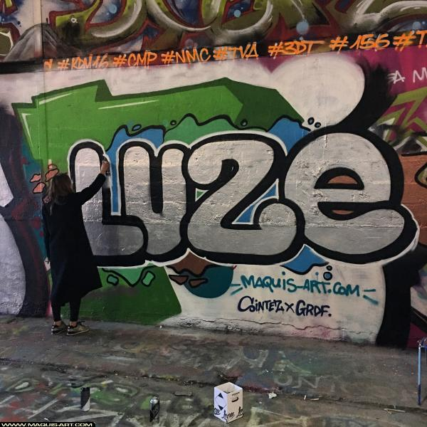 Photo de LUZE, réalisée au Maquis-art Wall of fame - L'aérosol, Paris