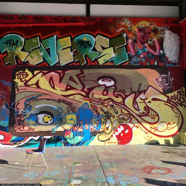 Photo de REVERSE, réalisée au Maquis-art Wall of fame - L'aérosol, Paris