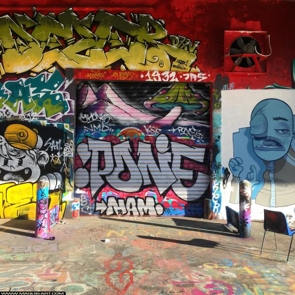 Photo de réalisée au Maquis-art Wall of fame - L'aérosol, Paris