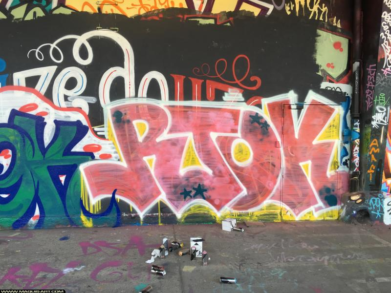 Photo de RTOK, réalisée au Maquis-art Wall of fame - L'aérosol, Paris