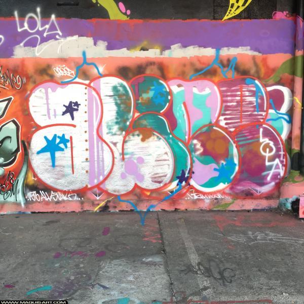 Photo de IAZE, réalisée au Maquis-art Wall of fame - L'aérosol, Paris