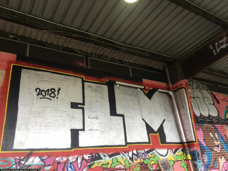 Photo de FLM, réalisée au Maquis-art Wall of fame - L'aérosol, Paris