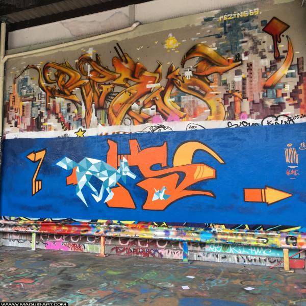 Photo de JUSK, réalisée au Maquis-art Wall of fame - L'aérosol, Paris