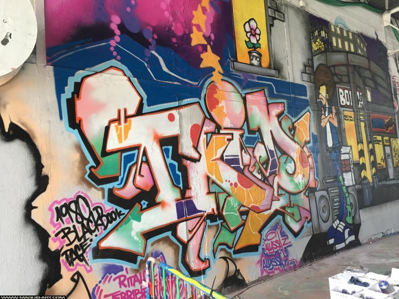 Photo de T.KID, réalisée au Maquis-art Wall of fame - L'aérosol, Paris